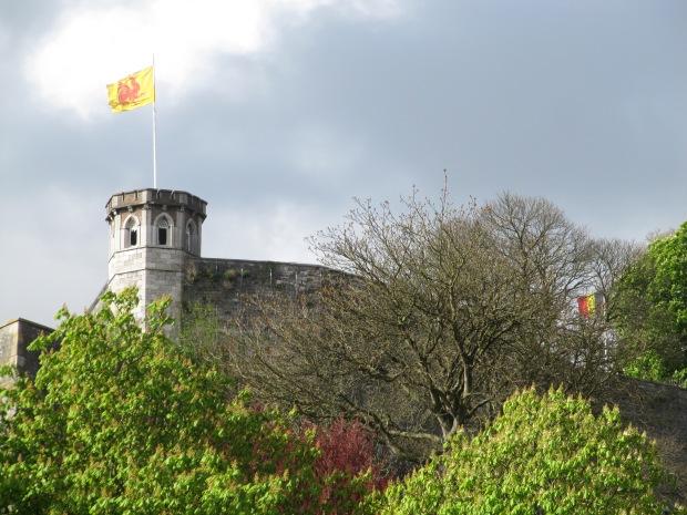 Le drapeau de la Wallonie, dont Namur est la capitale.